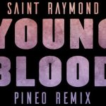 Saint Raymond - Young Blood (PINEO Remix) - acid stag