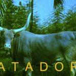 SOFI TUKKER - Matadora [New Single] - acid stag