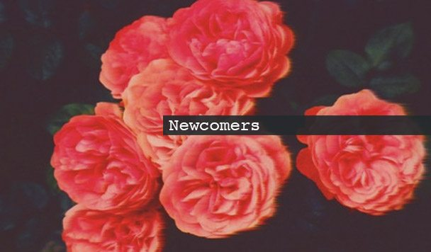Newcomers: TWO32, Karmadella, Marble Empire & So Much Light