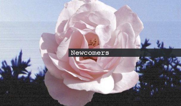 Newcomers: Goldn, WULFE, Lia Lia & SLACKIN' BEATS