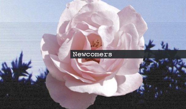 Newcomers: Goldn, WULFE, Lia Lia & SLACKIN' BEATS