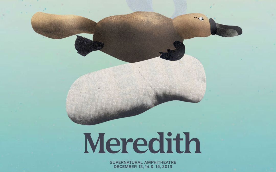 Meredith 2019 – Lineup Announcement