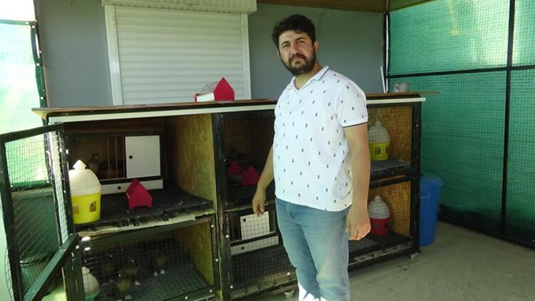 Güvercinleri için 80 bin TL'lik klimalı kafes