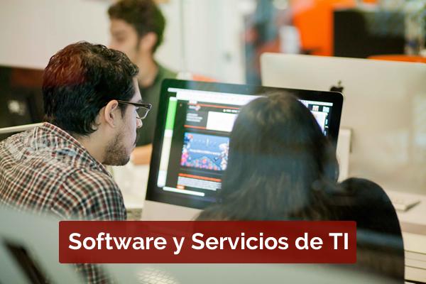 Sector Software y Servicios de TI en Medellín