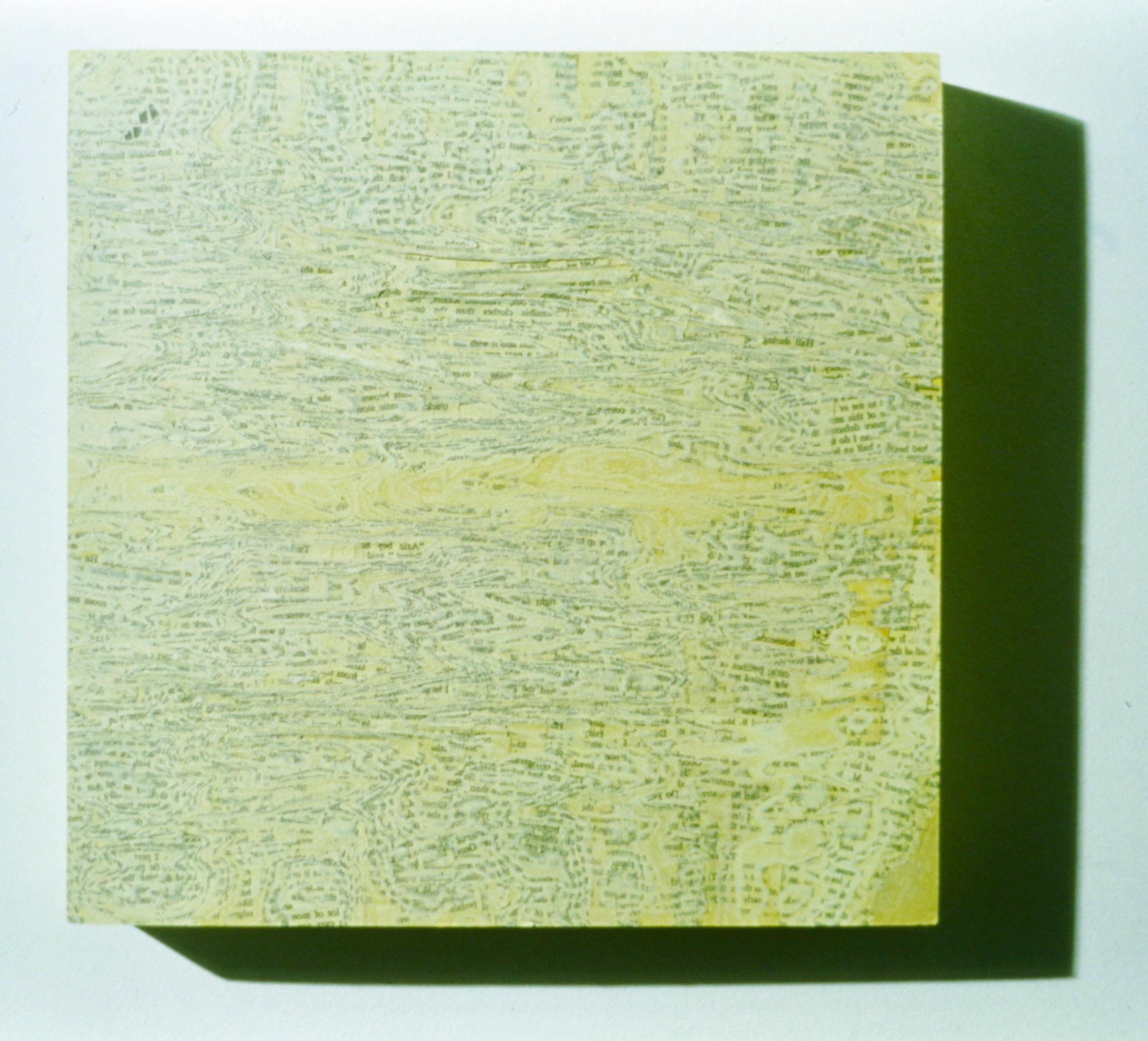 """biofiction: two novels on wood (1996) 12"""" x 12"""" x 2.5"""""""