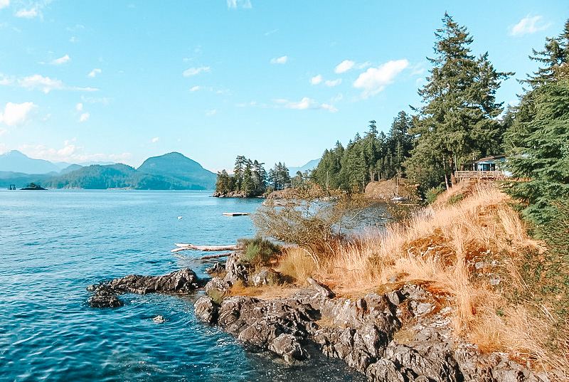 Photo of a rocky shoreline with green fir trees and small mountains in the background.