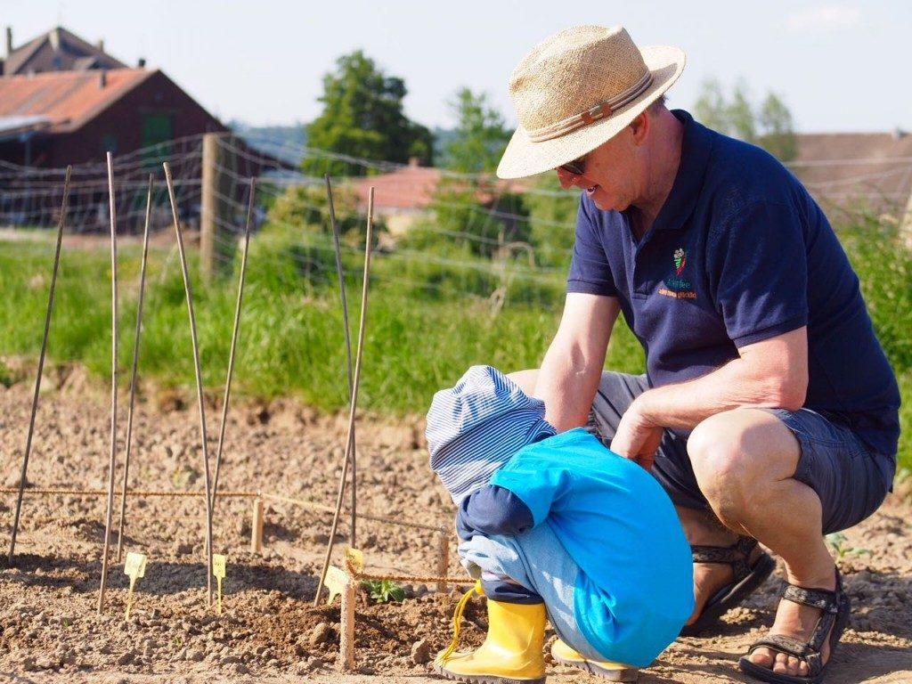 Mann von Ackerfee mit Enkelkind auf der Parzelle des Mietackers