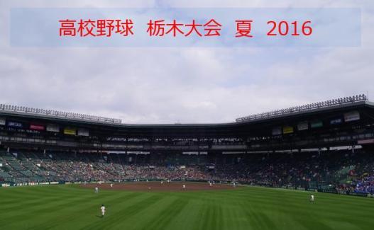 栃木2016