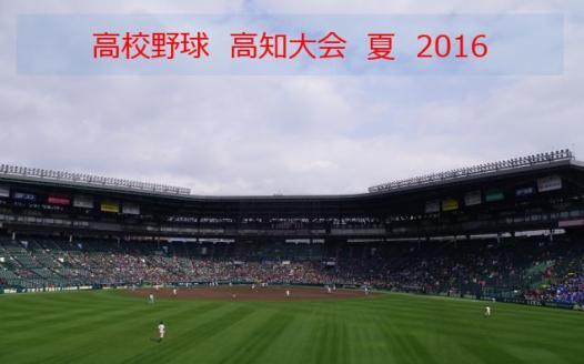 高知2016