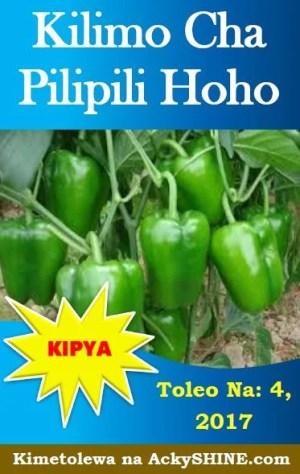 Kilimo cha Pilipili Hoho