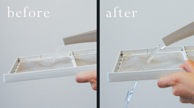 Dryer lint trap cleaning