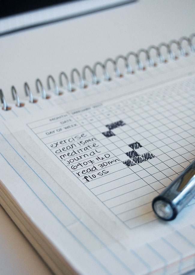 Harness the power of habit - Daily Habit Tracker PDF Download