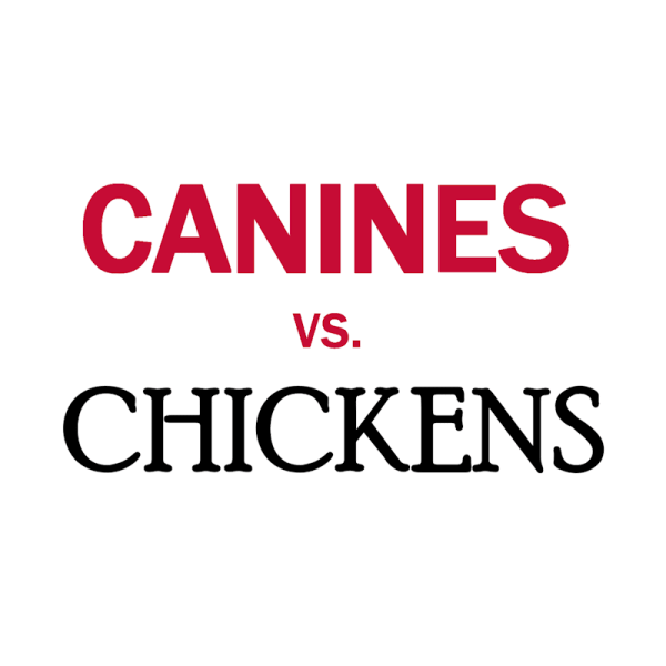 Canines vs. Chickens