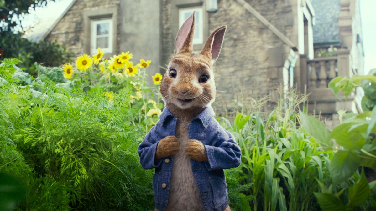 Cinematographer Peter Menzies Jr. ACS talks about his workon the 3D live-action, computer-animated 'Peter Rabbit'