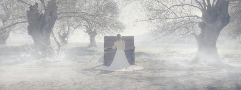 1D. A shot from Nancy Ajram's 'Watar' music video - DOP Dale Alexander Bremner