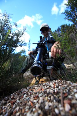Peter Nearhos ACS filming jack jumper ants at their nest for 'David Attenborough's Tasmania' - PHOTO Matt Hamilton, Terra Mater