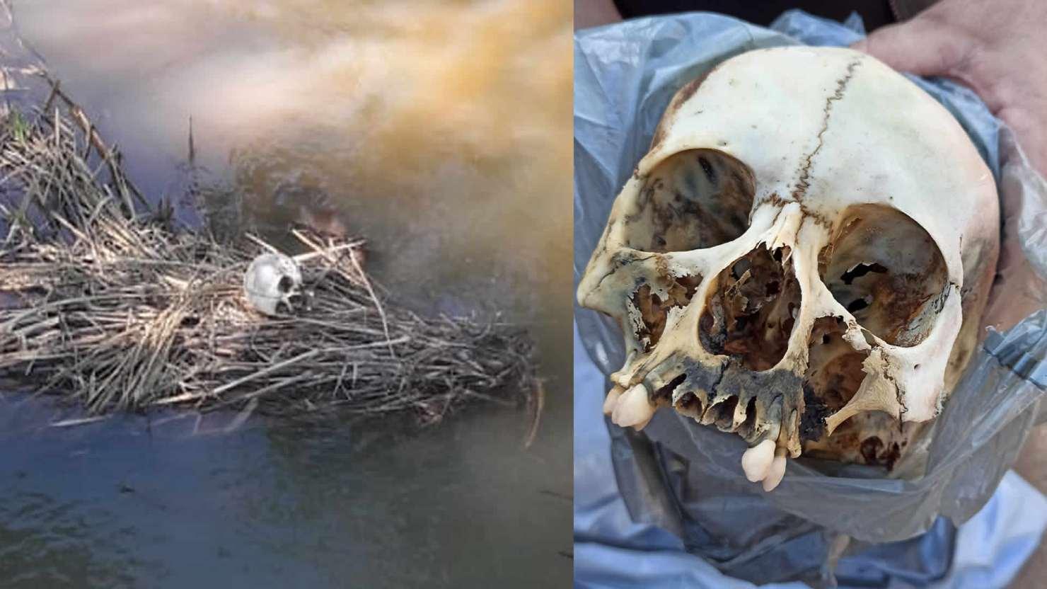 Crânio humano é encontrado dentro de igarapé Judia, no 2º Distrito de Rio Branco