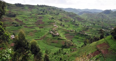Applications open for two-part fellowship on covering land and property rights in Uganda