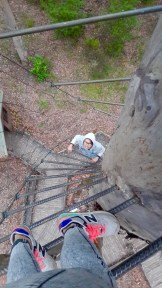 Climbing up Diamond Tree