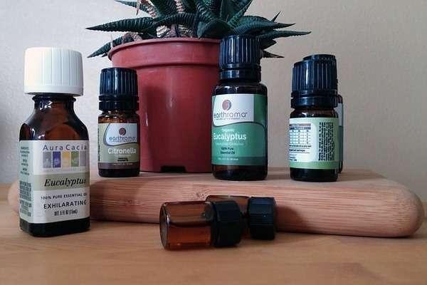 Eucalyptus Oil for Blackheads