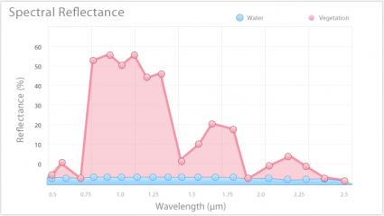 Gráfico de la línea de signatura espectral de la vegetación y el agua