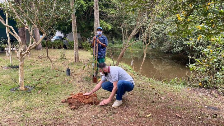 Dia do Meio Ambiente é lembrado com plantio no Jardim Adelina