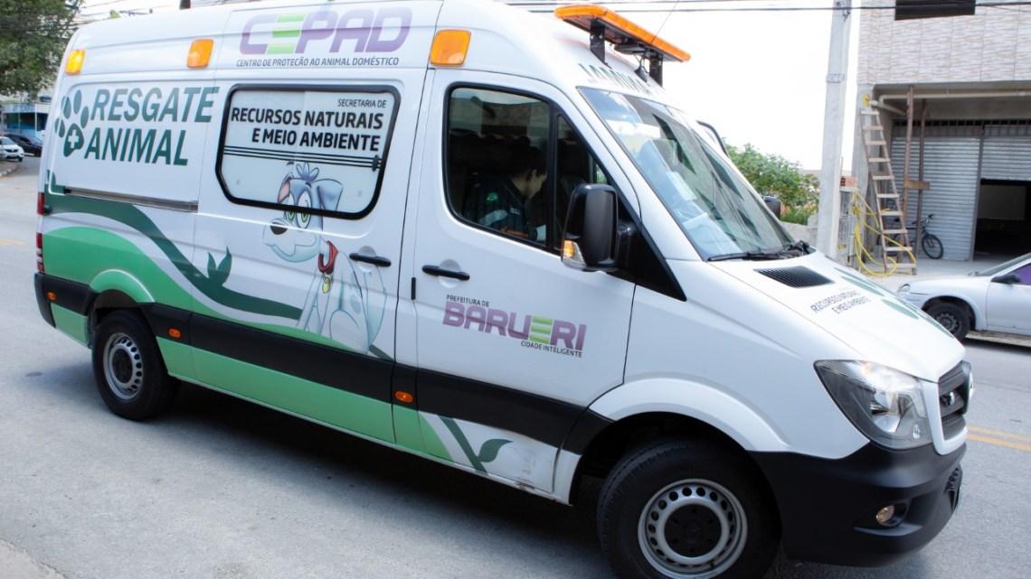 CEPAD realiza resgate emergencial de animais