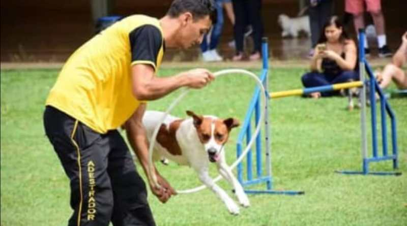 2º ArraiAU Pet de Vinhedo que acontece das 9h às 17h, no Belvedere Park