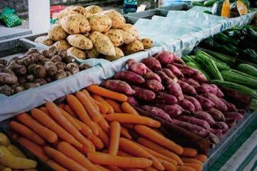 Foto ilustrativa, banca de verduras)