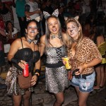 carnaval_dtna_terceirodia_112