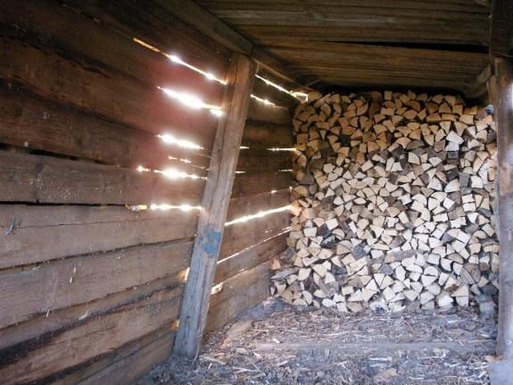 Firewood_43