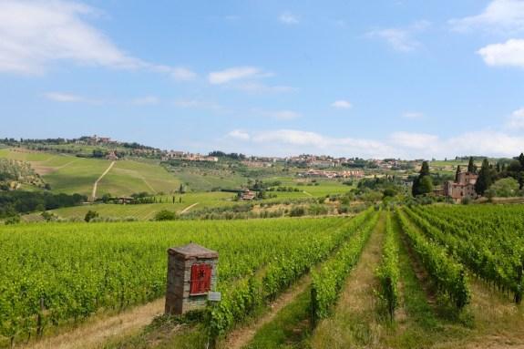 Fontodi_Tuscany_15