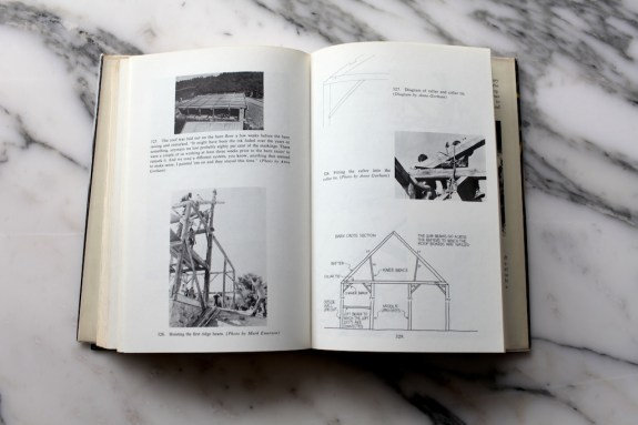 salt book 3