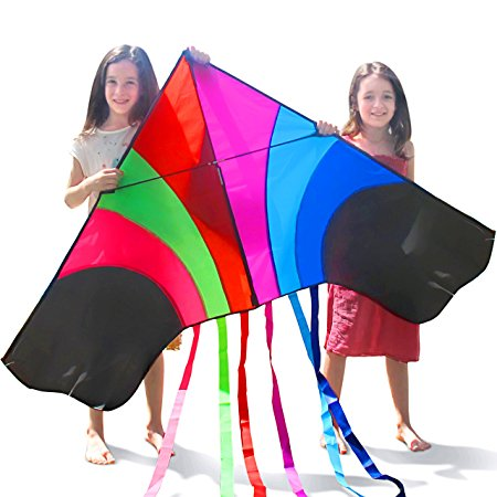 10. Tomi Kite- huge rainbow kite