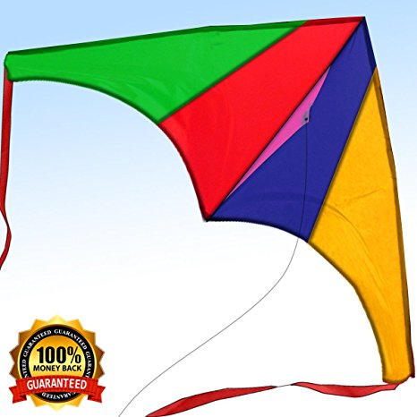 2. 2017 limited edition- easy flyer kite for kids and adults by limited supplies