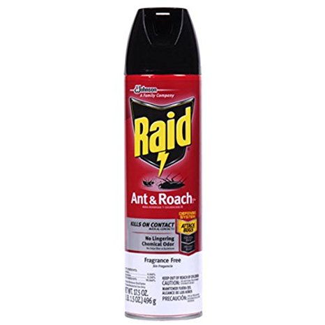6. Raid ant and roach killer insecticide.
