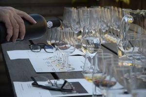 La cata de vinos y el análisis sensorial