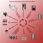 ¿Cómo se elabora el vino tinto? Sus 7 etapas fundamentales