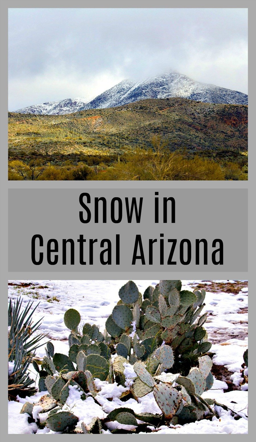 It is rare to see snow in Arizona except in the high country, so when we get snow in Central Arizona, we celebrate!