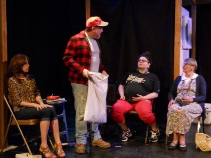 Maine Playwrights Festival – Acorn Productions