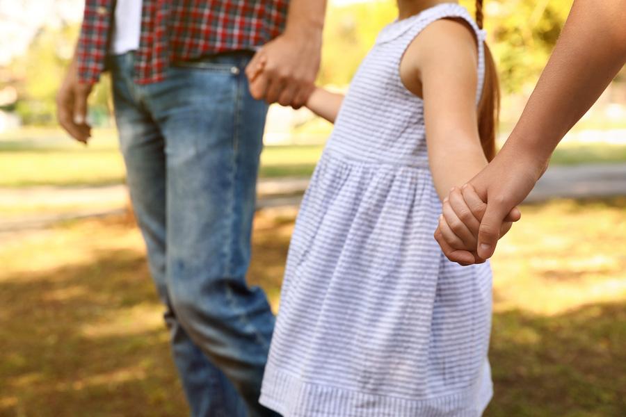 parenting facilitation, coparenting, court ordered child services