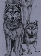 Timber Wolf Bookmark