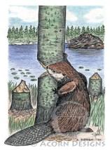 Beaver Notecard