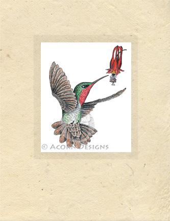 Ruby-throated Hummingbird Lokta Card