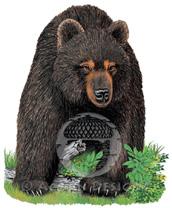 Bear Lokta Card