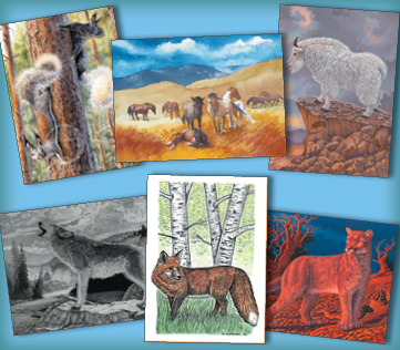 North American Mammals Assortment