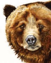 Grizzly Bear Lokta Card