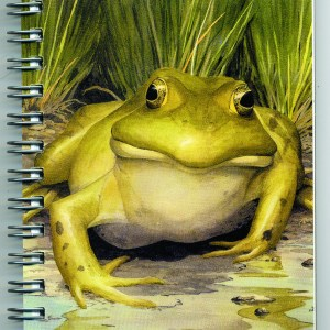 Cover image - Bullfrog Mini Journal