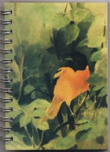 Cover image - Baltimore Oriole Mini Journal