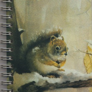 Cover image - Grey Squirrel Mini Journal